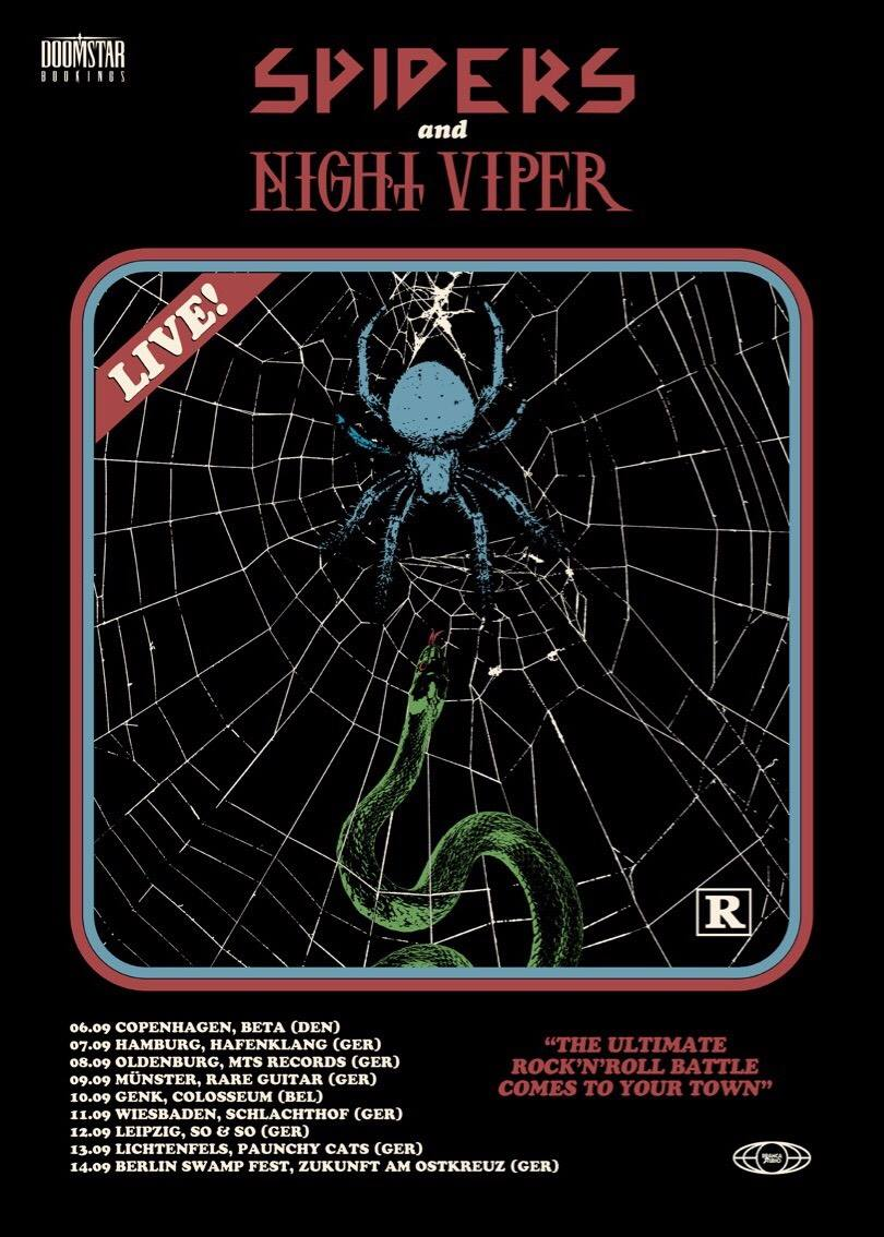 Preview: Spiders + Night Viper