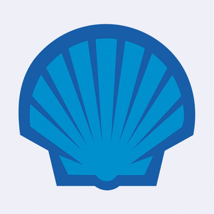 Image of Blue Shell